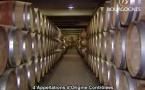 Bourgogne ses vins