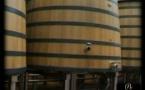 Bourgogne vendanges 3