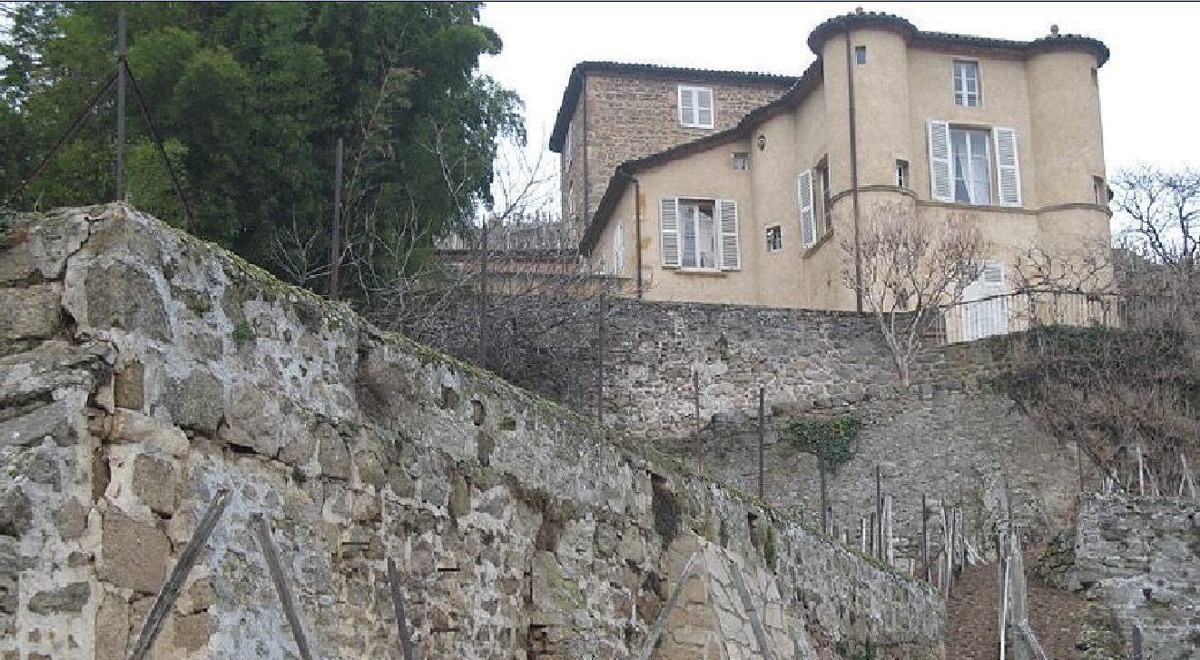 Condrieu, la Côte Chérie - Porte d'entrée des Côtes du Rhône