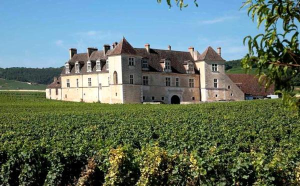 La Bourgogne Viticole