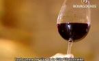 Bourgogne vins rouges