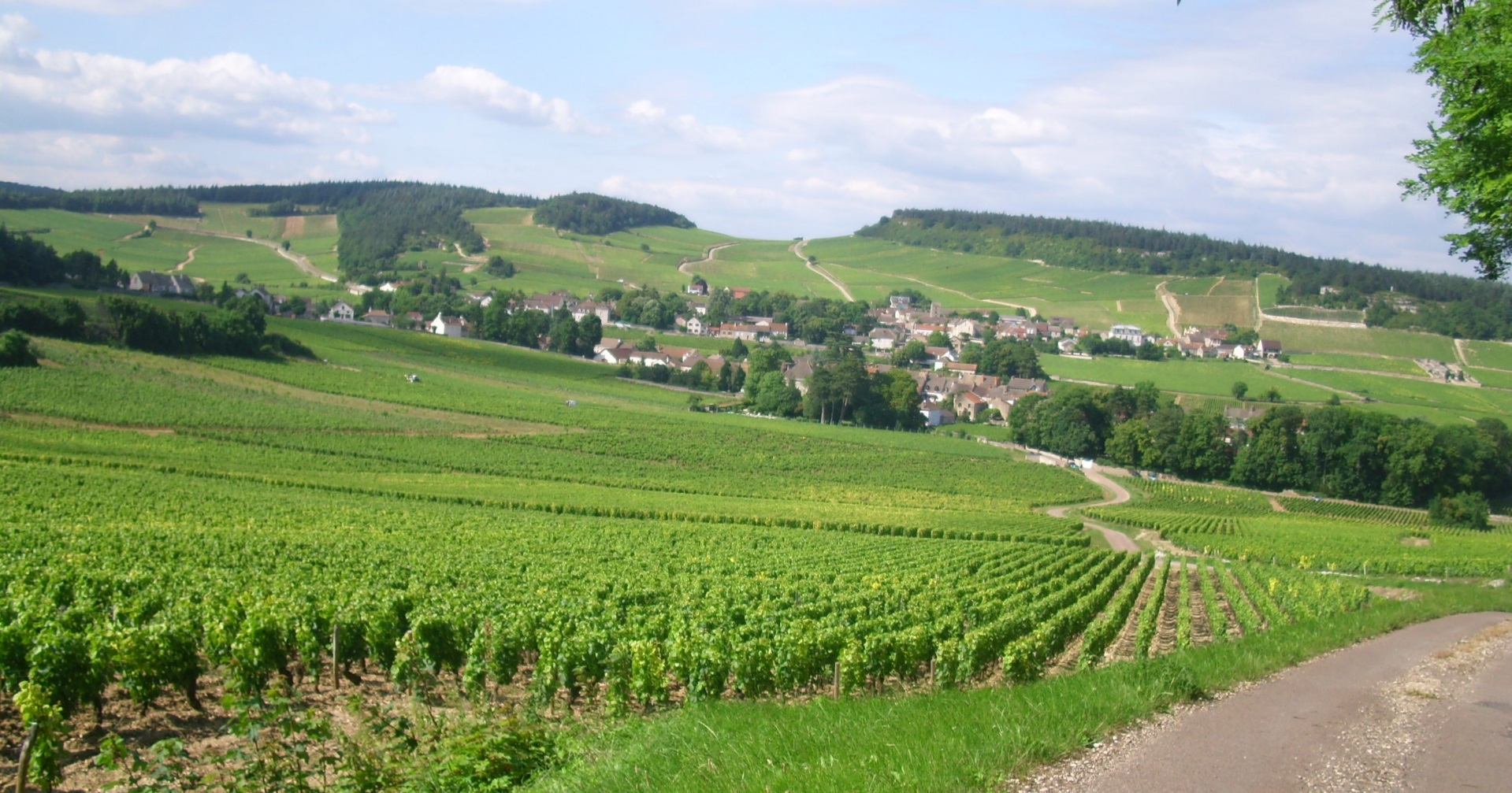 Mercurey village