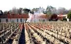 Février dans les Vignes