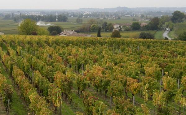 Classement des Vins de Saint-emilion 1996