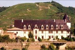 Ampuis vignes château