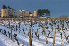 Chateau Yquem neige G